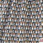 lillestoff - freezing pinguin, blau - bio-sommersweat