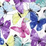 c.pauli - butterfly wind - bio-voile