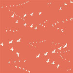 birch - flight, coral - bio-double gauze