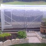 Tomatenhaus, kleine Folienüberdachung