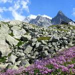 Photo: Stefan Joller / Location: Albigna-Hütte, Bergell