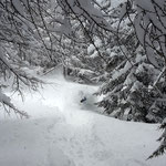Photo: Stefan Joller / Location: Simplon, Valais