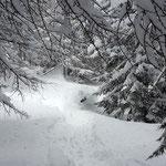 Photo: Stefan Joller / Location: Simplon, Valais
