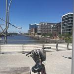 Mit dem Fahrrad gehts von der Hafencity bis zum Elbinsel Entenwerder