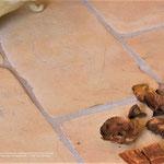Oberflachenstruktur: Millennium, Farbe: Honig, Kantenbearbeitung: gerundet, Format: Rechteck 30x15 cm