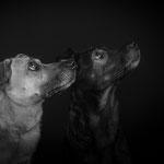 Dorle & Hazel, Schwestern