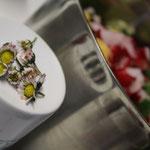 Die Blütenköpfchen der Gänseblümchen schmecken lecker nussig