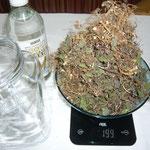 zutaten: ein weithalsiges glas, ansatzkorn, 200g brennnesselkraut und -wurzel