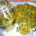 das glas wird mit löwenzahnblüten gefüllt, bei diesem rezept verwende ich ein und dieselbe tasse als maß