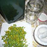 zutaten: frische blüten und knospen, olivenöl, mörser, weithalsiges glas
