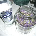 blüten in ein glas geben und mit votka oder korn oder einem obstler auffüllen