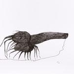 61 x 42, Tusche auf Papier/Ink on paper