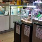 Aquarienausstellung