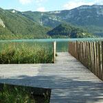 Vue sur le lac d'Aiguebelette depuis la Maison du lac