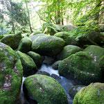 Naturschutzgebiet Doost