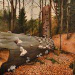 Ohne Titel // Acryl auf Leinwand // 50x70 cm // 2013