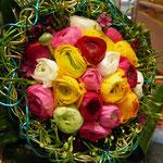""" Ranunculus ..."" Du 19/03/2013 au 25/04/2013"