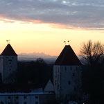 Schloss Neuburg bei Abendsonne mit Blick auf den Watzmann