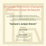 Somora´s Juniper Dream N/hu Schweizer Schönheits-Champion...10.09.2021