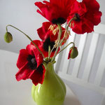 Poppys made of gumpaste by Floralilie