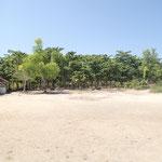 島では「子供の森」計画で植え、育てた森が見られます。