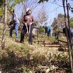 熊野森南斜面での作業