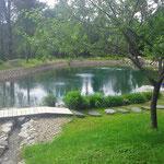 Le lac en eau, vue de l'amont vers l'aval