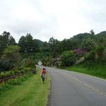 Boquete. Camino de bajada por el área del Alto Lino entre bonitas casas, la mayoría de extranjeros
