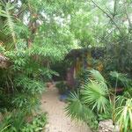 Jardín del Hostel La Candelaria