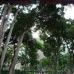 Parque de la Estancia PDVSA, en la Av. Francisco de Miranda