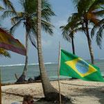 España y Brasil presentes