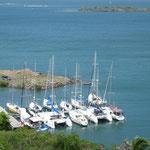 Hog Island , al sur de la isla