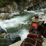 Llegamos al río con las mulas