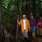 Nos adentramos en la selva