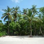 Las playas con un telón de fondo muy verde