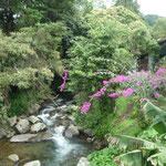 Bonitos paisajes de Boquete