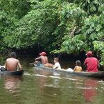 Nos cruzamos con canoas de waraos