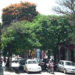 Calle Hidalgo, donde se encuentra el hotel