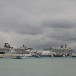 Los cruceros