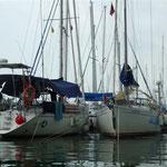 Los barcos en la marina de Bahía Redonda