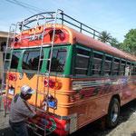 Un bus que este mismo día estrenan, nos dice orgulloso el conductor