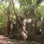 Ruinas del antiguo fuerte, Cabrits