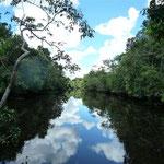 El río y su reflejo