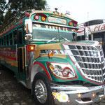 Los autobuses de parrilla