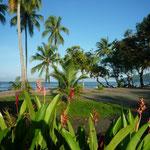 El litoral de Manuel Antonio