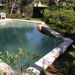 Margelle piscine en Massangis vieillie ép. 8 cm.