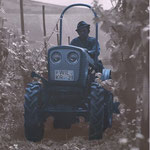 Eicher 3706 Schmalspur Traktor