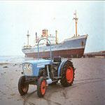 Eicher 3705 Schmalspur Traktor