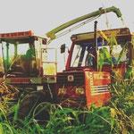 Fiatagri 110-90 DT mit Claas Jagua