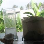 Das Glas war fast voll, aber zu verführerisch für Mavera.